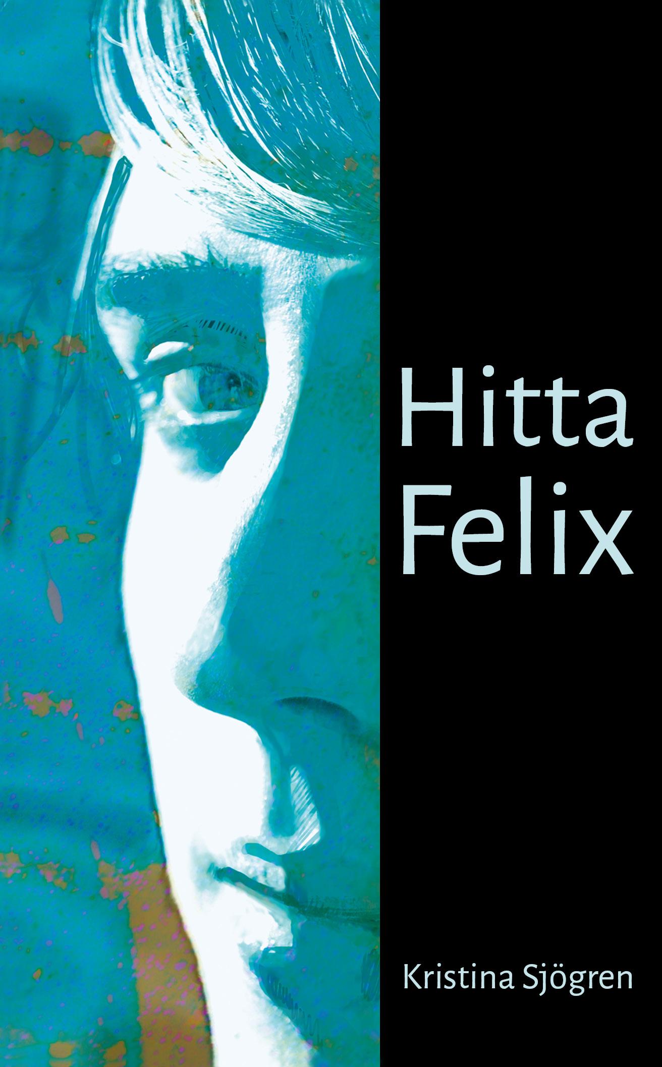 Hitta Felix av Kristina Sjögren